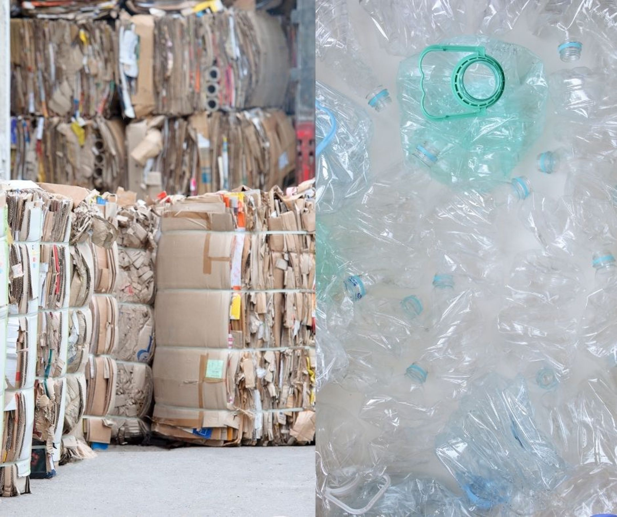 Vignette cartons et plastiques